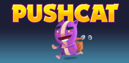Review: Pushcat