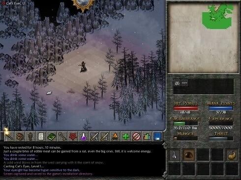 Eschalon Book II Screenshot A